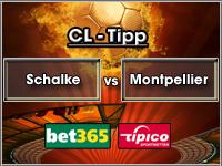 Champions League Tipp Schalke vs Montpellier